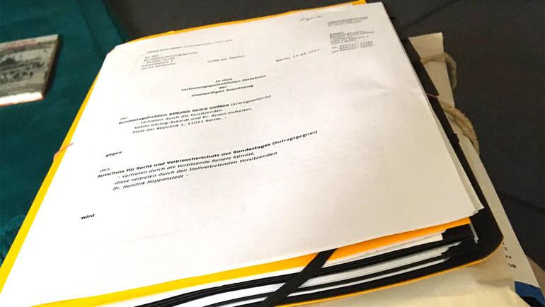 Klage vor dem Bundesverfassungsgericht - Bundestagsfraktion Bündnis ...
